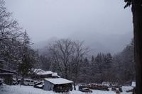 雪降りですが・・・。 - 菜やの便り