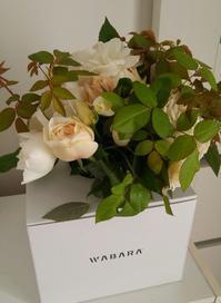 WABARA - Cozyで楽しい暮らしに憧れて♪