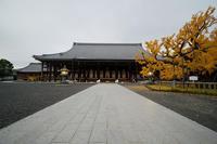 2019京都の紅葉・下京区西本願寺 - デジタルな鍛冶屋の写真歩記