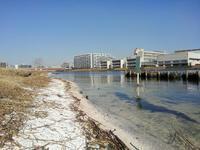 鶴見川河口の町 #1 - 神奈川徒歩々旅