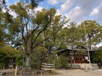 《御朱印巡り》築地神社若宮八幡社 - message from YUZUMI