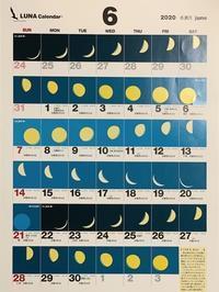オオクワ灯火採集に向けた  moon age『月齢カレンダー』 2020年度 - Kuwashinブログ