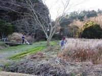 草刈り大作戦~2020~ - 千葉県いすみ環境と文化のさとセンター