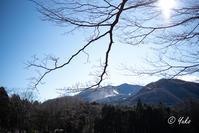 箱根長安寺 #3 / Hakone Choan Temple #3 - Seeking Light - 光を探して。。。