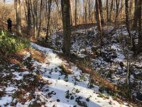 雪の残る遊歩道 - 風路のこぶちさわ日記