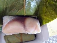 【美味しいものが少ない奈良での名物】柿の葉寿司 - お散歩アルバム・・如月の徒然