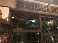 箱崎名店天井桟敷 - 福岡の美味しい楽しい食べ歩き日記