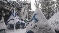 降りました雪⛄ - 【日直田酒】 - 西田酒造店blog -