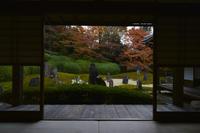 東福寺塔頭光明院 - Deep Season