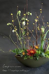 定期装花からスプレーマム:チスパ - Impression Days