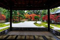 紅葉が彩る京都2019秋の廬山寺 - 花景色-K.W.C. PhotoBlog