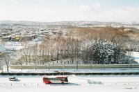 昨日の雪と雪だるまを作る姉妹 - 照片画廊