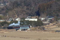 小貝川を渡る白煙- 2019年・真岡鉄道 - - ねこの撮った汽車