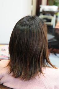 トレンドヘアカラー - blanc.hair  髪とコネタ