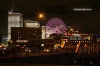 一夜限りのイルミネーション『そうだ 横浜、行こう』④ - 写愛館