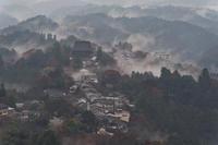 雨の吉野山① - katsuのヘタッピ風景