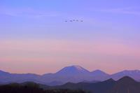 白鳥が男体山を飛ぶ!多々良沼の夜明け - 『私のデジタル写真眼』