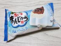 あいすまんじゅう 塩バニラ@丸永製菓 - 岐阜うまうま日記(旧:池袋うまうま日記。)