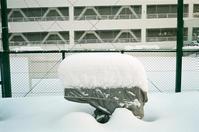 少し例年に近づいた雪 - 照片画廊
