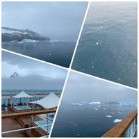 南極クルーズ(45 )南極4日目 〜 ヒゲペンギンと鯨の尾びれ(シアバ湾) - リタイア夫と空の旅、海の旅、二人旅