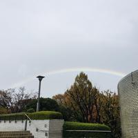 大雨と虹 - ひびののひび