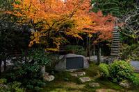 紅葉が彩る京都2019塔頭の彩り - 花景色-K.W.C. PhotoBlog