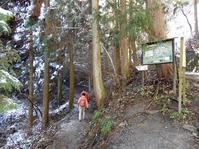 雪の陣馬山 - 歩のち登、ときどき走。