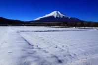 令和2年1月の富士(25)花の都公園の富士 - 富士への散歩道 ~撮影記~