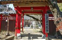 願成就寺(東金)~五輪塔と枝垂桜 - 東金、折々の風景
