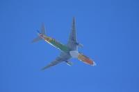 カラフルな旅客機 - 平凡な日々の中で