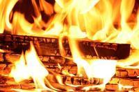 『火』の魅力 - José Ishiguroの前衛芸術