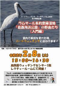 ★冬のバードウォッチング・フェスティバル2020のお知らせ - 葛西臨海公園・鳥類園Ⅱ