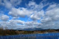 粗剪定が始まる - ~葡萄と田舎時間~ 西田葡萄園のブログ