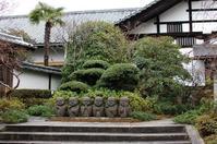 2020.01.23リハビリ散歩~東福寺界隈1 - 京さんぽ