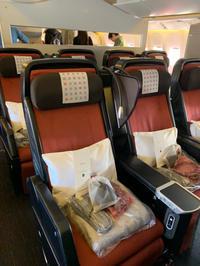 日本航空(JAL)のプレミアムエコノミークラスについて( HND⇒ CDG) 2019年12月 - おフランスの魅力