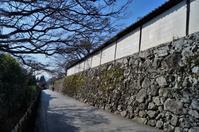 滋賀院門跡の石垣 - たんぶーらんの戯言