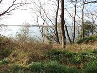 『サリオパーク祖父江 ワイルドネイチャープラザを歩いて・・・』 - 自然風の自然風だより