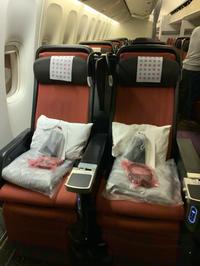 日本航空(JAL)のプレミアムエコノミークラスについて(CDG⇒HND)2019年12月 - おフランスの魅力