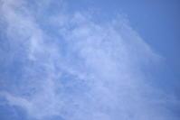 日曜はいいお天気 - むーちゃんパパのブログ4