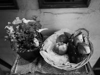 野菜かご - 節操のない写真館