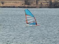 『Windsurfing(ウインドサーフィン)とFrisbeedog(フリスビードッグ)』 - 自然風の自然風だより