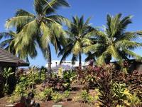 2020年1月6(月)ハワイ島⇒成田 - 徒然旅日記