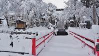 雪の花が満開でした! - 浦佐地域づくり協議会のブログ