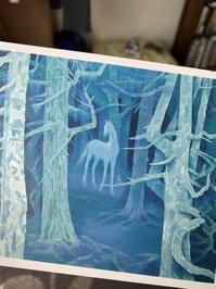 白馬の森と、最近のセッションの変化 - Earth & Sky blog