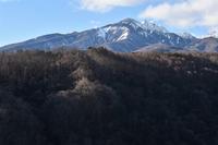八ヶ岳2020冬② - 光画日記2