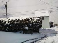 2月6日積雪あり。 - 百笑通信 ブログ版