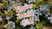 フラワーデモ、2月は39都道府県で開催されます。 - ウィメンズカウンセリング松山 スタッフブログ