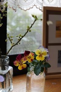 窓辺の花 - mille fleur の花とおやつ