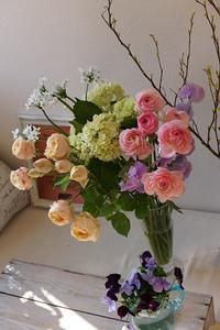 クリアな春色 - mille fleur の花日記