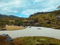 冬の日本に一時帰国その②アートの事アレコレ - 半ばヨガ師QのSoul・the・日々